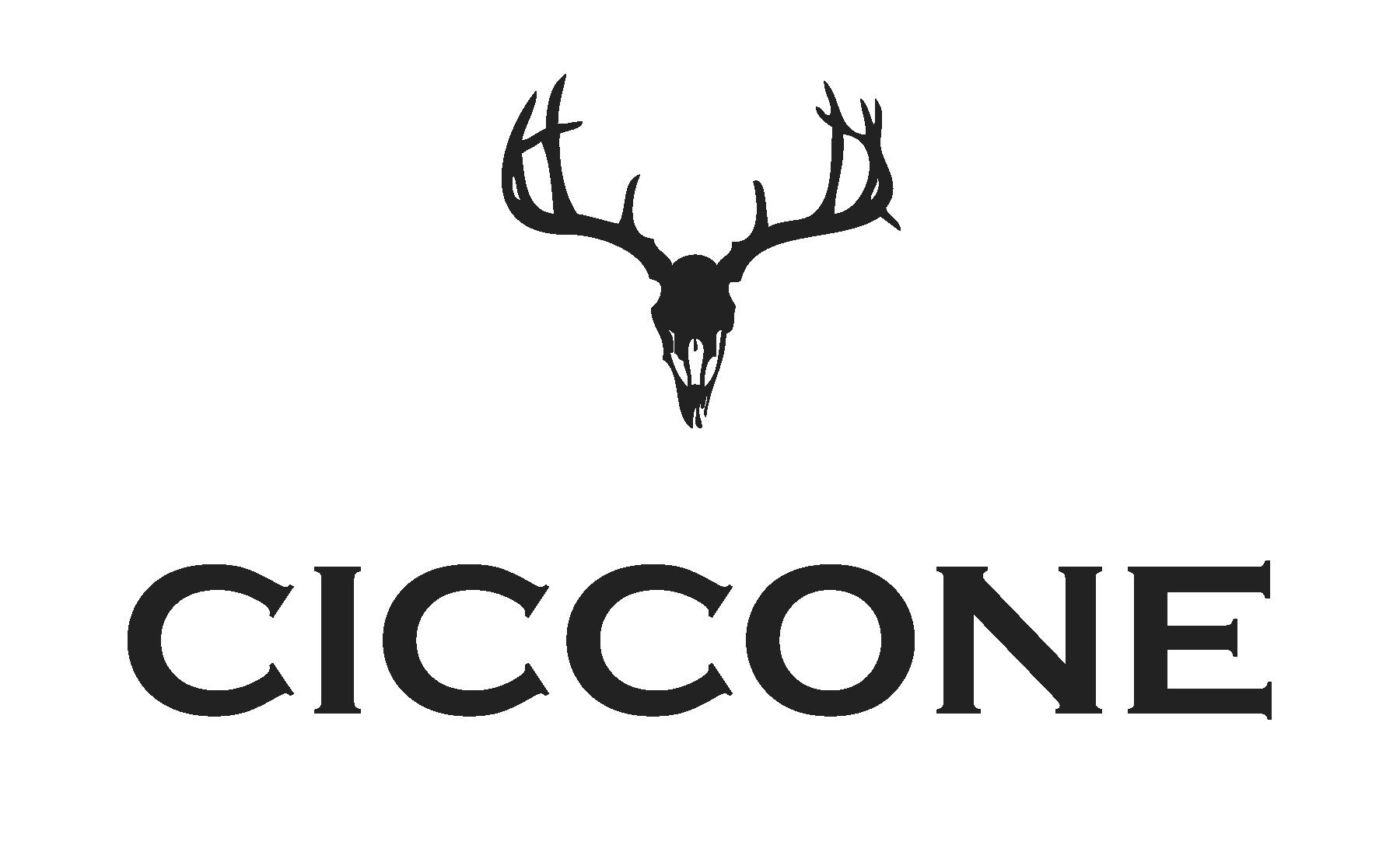 ciccone-main-logo